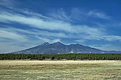 Looking at the North face of the San Francisco Peaks.