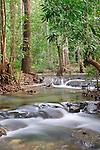 Cascades-Rainforest-Khao-Braang Kraam