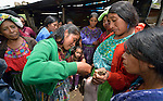Maria Lucia Ventura injects a pig during a workshop at an eco-agricultural training center in Comitancillo, Guatemala. The center is sponsored by the Maya Mam Association for Investigation and Development (AMMID).