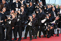 """xxx at the """"Okja"""" premiere during the 70th Cannes Film Festival at the Palais des Festivals on May 19, 2017 in Cannes, France. (c) John Rasimus /MediaPunch ***FRANCE, SWEDEN, NORWAY, DENARK, FINLAND, USA, CZECH REPUBLIC, SOUTH AMERICA ONLY***"""
