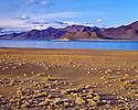 Desert Nevada Scenics Pyramid LAke