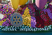 Tournament of Roses Parade; Floats, Los Angeles CA; Pasadena; California; Flower close-up, rose; perennial; flowering shrub; vine; genus; Rosa; Rosaceae;