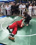 Merrick, New York, USA. 27th September 2015. Students of Goshinkan Jujitsu Dojo Family Self Defense Center demonstrate jujitsu moves at the Merrick Fall Festival