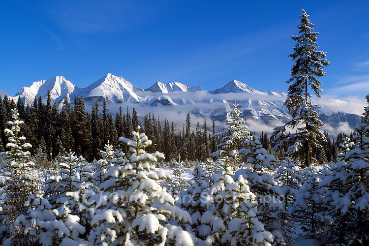Kootenay National Park, Canadian Rockies, BC, British Columbia, Canada - Snow Covered Trees and Mitchell Range Mountains, Winter