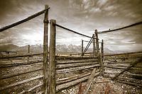 Teton Corral with a View - Wyoming<br /> Grand Teton NP