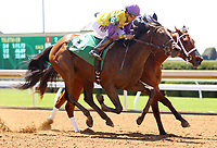 LEXINGTON, KY - April 09, 2017, #5 Phone Chick and Joe Bravo outduel #4 Five Star Factor and Jose Ortiz in the 1st race, Allowance $72,000 for 3 year old fillies at Keeneland Race Course.  Lexington, Kentucky. (Photo by Candice Chavez/Eclipse Sportswire/Getty Images)