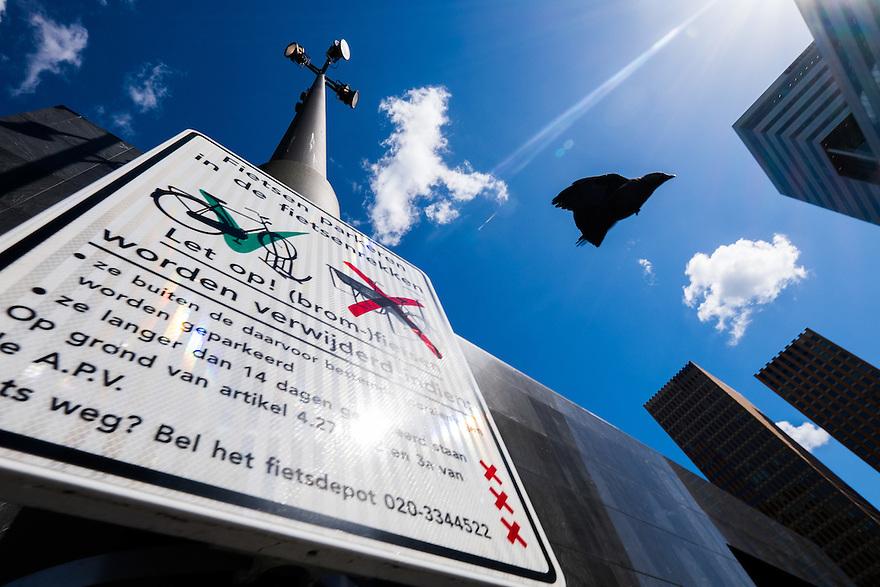 Nederland, Amsterdam, 30 april 2015<br /> Kraai vliegt van een bord dat aangeeft dat fietsen hier niet geparkeerd mogen worden en worden verwijderd.  <br /> <br /> Foto: Michiel Wijnbergh