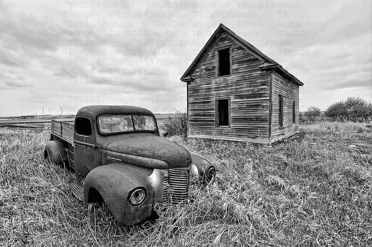 Old rusty pickup truck abandoned in rural location beside old wooden barn in Rolette County USA