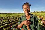 A woman farmer near Chibamu, in northern Malawi.