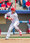 13 March 2016: Washington Nationals infielder Jason Martinson in action during a pre-season Spring Training game against the St. Louis Cardinals at Space Coast Stadium in Viera, Florida. The teams played to a 4-4 draw in Grapefruit League play. Mandatory Credit: Ed Wolfstein Photo *** RAW (NEF) Image File Available ***