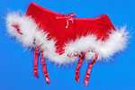 Red fluffy Christmas women skirt sexy romantic lingerie with white fur Isolated on blue background