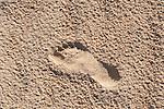 Footprint in sand, Corralejo Dunes National Park (Parque Natural de las Dunas de Corralejo), Fuerteventura, Canary Islands, Spain