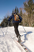 A skier enjoys fresh snow in the Escanaba River State Forest near Marquette in Michigan's Upper Peninsula.