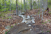 May 2016 - Stone steps on the Mt Tecumseh Trail in Waterville Valley, New Hampshire during the spring months. A herd path has formed on the right side of the steps from hikers avoiding (not using) the steps. Hikers are also avoiding the steps by using the old section of trail that is on the left side of the steps. If these herd paths are not blocked off it will lead to more erosion damage to this section of trail. And this defeats the purpose of the staircase. These steps are only a couple years old.