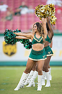 Tampa, FL - September 4th, 2016:USF cheerleaders perform during game against Towson at Raymond James Stadium in Tampa, FL.  (Photo by Phil Peters/Media Images International)