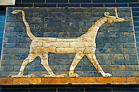Dragon relief on glazed bricks from the Ishtar Gate, Babylon, Iraq constructed in about 575BC by order of King Nebuchadnezzar II on the north side of the city. Dedicated to the Babylonian goddess Ishtar, the monumental gate joined the inner & outer walls of Babylon it was one of the Seven Wonders of the ancient world. Istanbul Archaeological Museum.