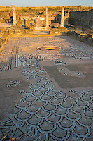 Mosaics and ruins at Stobi, 2000 year old Roman town in Southern Macedonia, Western Balkans