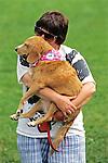 Owner Holding Dog
