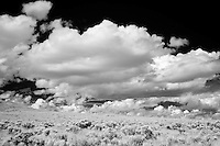 Infrared photograph of desert scrub and clouds.  Fine art photography by Michael Kloth.