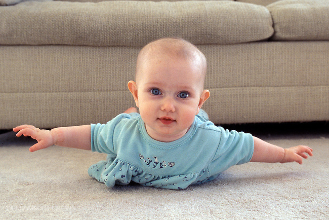"""Berkeley CA Baby girl five-months-old showing off mastery of """"airplane pose"""" raising upper body  MR"""
