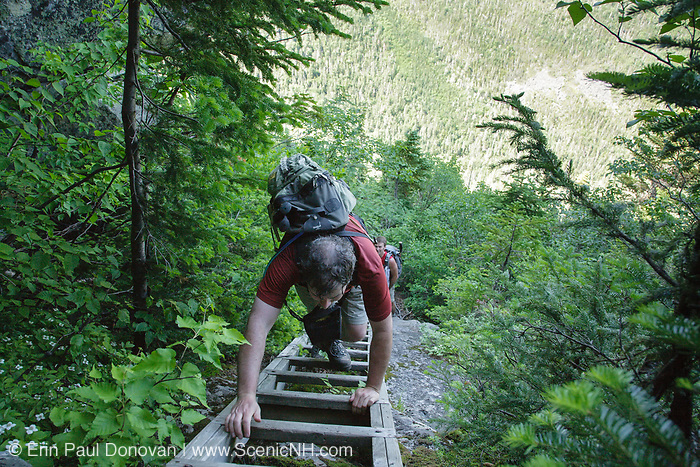 Hikers climbing a trail ladder along Six Husbands Trail in the Great Gulf Wilderness of the New Hampshire White Mountains during the summer months.