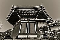 Koufuku-ji Temple in Nara Japan January 2010
