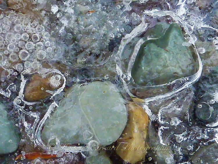 &quot;RIVER ROCKS ON ICE&quot;<br /> <br /> Colorful pebbles embedded in ice found on a trail in the Montana wilderness in winter.
