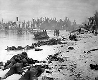 Sprawled bodies on beach of Tarawa, testifying to ferocity of the struggle for this stretch of sand.  November 1943.  (Navy)<br /> Exact Date Shot Unknown<br /> NARA FILE #:  080-G-57405<br /> WAR &amp; CONFLICT BOOK #:  1342