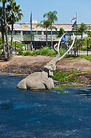 La Brea Tar Pits, large mammal, mammoth fossil, Drowning Elephant, Gas bubble, slowly, emerging, George C. Page Museum, Natural History, Los Angeles CA High dynamic range imaging (HDRI or HDR)