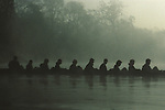 Asia, Nepal, Chitwan. Early morning grasscutters cross a river in Chitwan for the day's work.