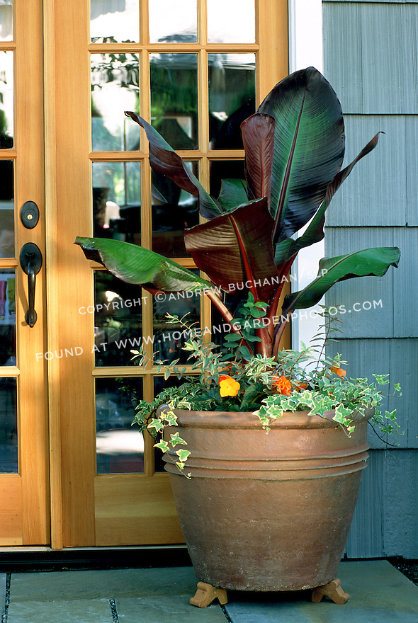 A large terra cotta container with a tropical feel sits on the flagstone patio by the back door.