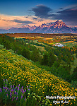 A photo of the Tetons with spring flowers.