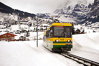 Grindelwald to Kleiner Scheidegg Train - Swiss Alps