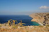 The southern coast of Socotra, Yemen