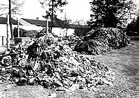 This pile of clothes belonged to prisoners of Dachau concentration camp, recently liberated by troops of the U.S. Seventh Army.  Slave laborers were compelled to strip before they were killed.  Germany, April 30, 1945.  T4c. Sidney Blau.  (Army)<br /> NARA FILE #:  111-SC-206193<br /> WAR &amp; CONFLICT BOOK #:  1129