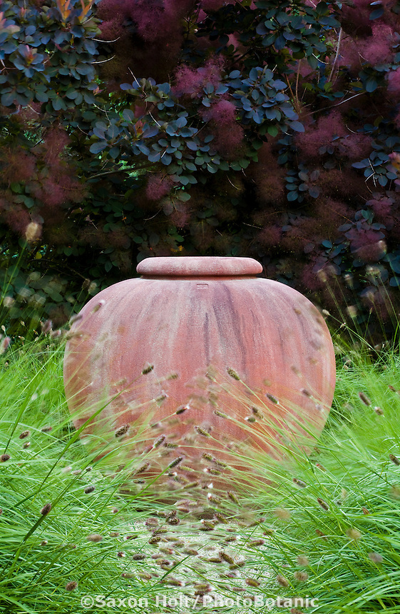 Terra cotta urn focal point in garden with ornamental grass, Pennisetum messiacum 'Bunny Tails' (Fountain Grass) and Smoke Bush (Cotinus 'Grace'); Robyn Sherrill design