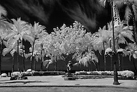 An infrared image of the Prince Kuhio statue in Waikiki.