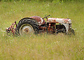 Soft grasses tickle the tires of a long forgotten tractor in the Catskill foothills of New York.