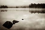 Foggy morning at Tully Lake, sepia toned.
