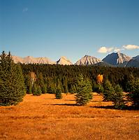 Kootenay National Park, Canadian Rockies, BC, British Columbia, Canada - Mitchell Range Mountains, Autumn / Fall