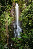 Beautiful Wailua Falls surrounded by lush greenery in Hana, Maui.