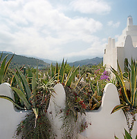 The crowded agaves growing on the roof frame the view of the distant mountains