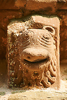 Norman Romanesque exterior corbel no 17 - sculpture of the head of an animal with a lions mane and beak shaped wide mouth. The Norman Romanesque Church of St Mary and St David, Kilpeck Herefordshire, England. Built around 1140