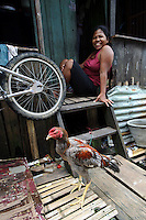 A cockerel outside a house, Tallo, Makassar, Sulawesi, Indonesia.