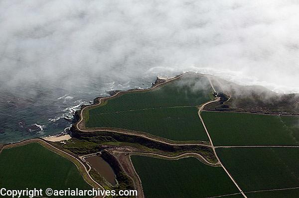 aerial photograph coastal farm Santa Cruz county, California