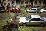 Trees down on West 90th St in New York during the brunt of Hurricane Sandy. ..Photo by Robert Caplin...