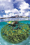 The island of Guam in the western Pacific Ocean has scenice vistas and abundant marine life