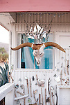 An eccentric southwestern dwelling with a mirror crowned cow skull.