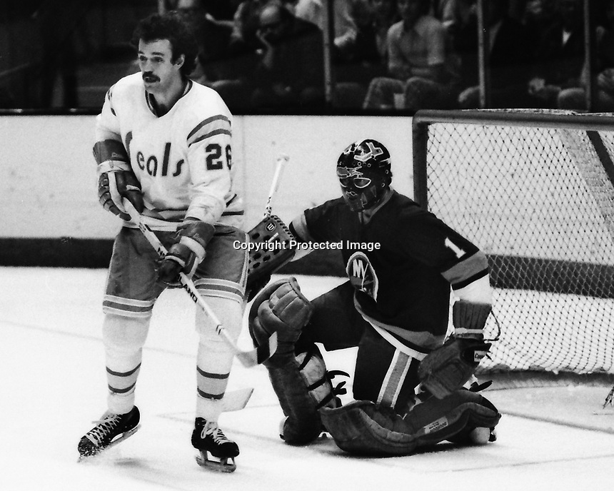 California Golden Seals Bob Girard and Islnader goalie Glenn Resch. (1975 photo by Ron Riesterer)