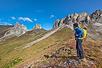 Hiker at Snowden mountain, Brooks range mountains, arctic, Alaska.
